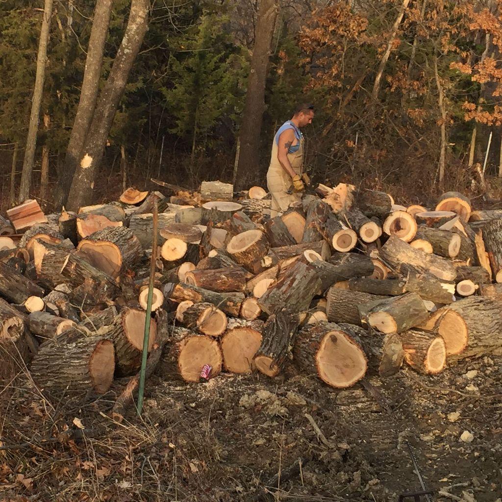Chop It & Haul It Tree Services