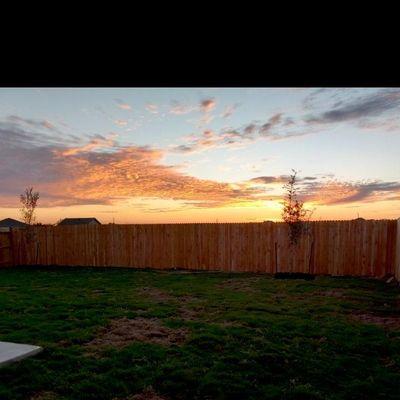 Avatar for Buenteo fencing/gate installation/ repairs