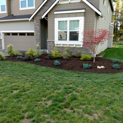 Weeding and re-mulching after