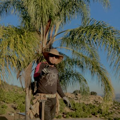 Avatar for Rosendo ramos